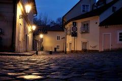 Castelo de Praga - mundo novo Fotografia de Stock Royalty Free