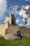 Castelo de Prudhoe Imagem de Stock Royalty Free