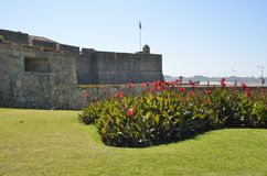 Castelo de Queijo Imagem de Stock