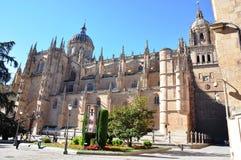 Castelo de Salamanca na Espanha Fotos de Stock Royalty Free