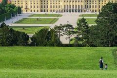 Castelo de Schönbrunn e skyline da cidade bonita Viena imagens de stock royalty free