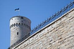 Castelo de Toompea em Tallinn Foto de Stock Royalty Free