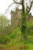 Castelo de Urquhart Fotos de Stock Royalty Free