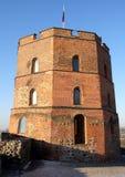 Castelo de Vilnius imagens de stock royalty free