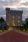 Castelo do arteaga Fotografia de Stock
