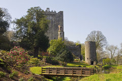Castelo do Blarney Fotos de Stock Royalty Free