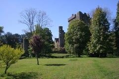 Castelo do Blarney e o campo Fotografia de Stock Royalty Free
