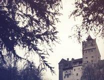 Castelo do farelo Imagens de Stock