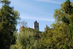 Castelo do farelo de montanhas de Fagaras imagens de stock royalty free