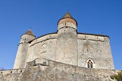 Castelo do neto Foto de Stock Royalty Free