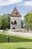 Castelo do Saltworks Imagens de Stock Royalty Free
