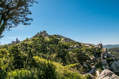 Castelo dos mouros. Moorish Castle in the background the Pena Palace, Sintra, Portugal Royalty Free Stock Images