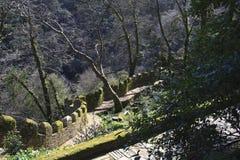 Castelo Dos Mouros Royalty Free Stock Photo