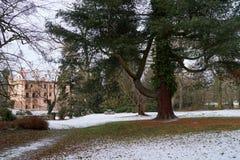 Castelo e pinheiro cor-de-rosa foto de stock royalty free