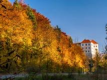 Castelo em Pieskowa Skala, Polônia fotografia de stock