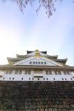 Castelo enorme Imagem de Stock