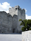 Castelo Ireland de Ross Fotografia de Stock Royalty Free
