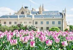 Castelo majestoso com tulipas de florescência, Moravia do sul de Lednice, Fotos de Stock