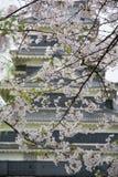 Castelo Matsumoto-jo de Matsumoto, primeiros castelos históricos japoneses em Honshu easthern, Matsumoto-shi, região de Chubu, Na Imagem de Stock Royalty Free