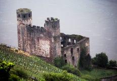 Castelo medieval ao longo do Rhine River em Alemanha Foto de Stock Royalty Free