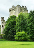 Castelo medieval do Blarney na cortiça do Co Cortiça - Irlanda Imagens de Stock Royalty Free