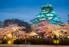 Castelo na estação da flor de cerejeira, Osaka de Osaka, Japão Fotografia de Stock Royalty Free
