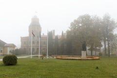 Castelo na névoa Fotos de Stock Royalty Free