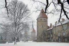 Castelo na neve Fotografia de Stock
