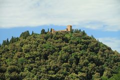 Castelo no monte verde Fotos de Stock