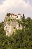 Castelo no sangrado Foto de Stock