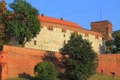 Castelo poland de Krakow Wawel. Fotos de Stock Royalty Free