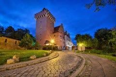 Castelo real em Poznan, Polônia imagem de stock
