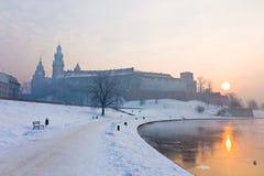 Castelo real histórico de Wawel em Cracow, Polônia Imagem de Stock Royalty Free