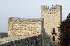 Castelo sérvio histórico fotografia de stock royalty free