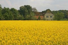 Castelo Scheventorf com campo da violação em Alemanha fotos de stock royalty free