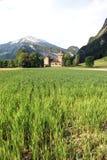 Castelo suíço velho Imagem de Stock