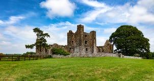 Castelo velho com campo de exploração agrícola na Irlanda Fotos de Stock