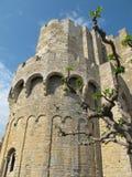 Castelo velho com a torre sob o céu azul fotografia de stock royalty free