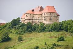 Castelo velho em Velki Tabor, Croatia Imagem de Stock Royalty Free