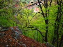 Castelo visto da floresta Fotos de Stock Royalty Free