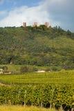 Castelos de Alsácia Fotografia de Stock Royalty Free