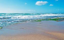 Castelsardo sunny shore Stock Images
