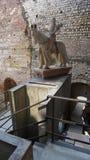 Castelvecchio, Verona, Italien Lizenzfreies Stockfoto