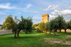Castiglione del Lago Umbrië Stock Afbeelding