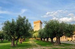 Castiglione del Lago (Umbria) Stock Photos