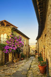 Castiglione della Pescaia, old street on sunset. Maremma Tuscany Royalty Free Stock Image