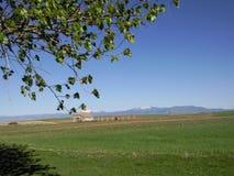 Castilian поля Стоковое Изображение RF