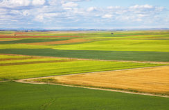 Castilla fields at spring Stock Photo