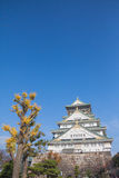 castillo à¸'beautiful de Osaka foto de archivo libre de regalías