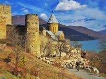 Castillo al lado del lago en Georgia Imágenes de archivo libres de regalías
